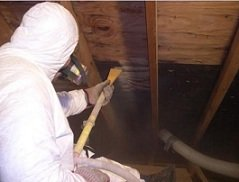 water damage mold removal and remediation